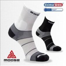 Moose Motion